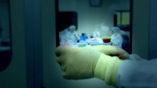 labor-techniker bei der arbeit - eingang stock-videos und b-roll-filmmaterial