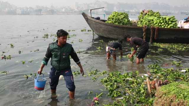 Laborer cleaning vegetable using polluted water near a temporary wholesale market at the bank of the Buriganga River in Dhaka Bangladesh on March 19...