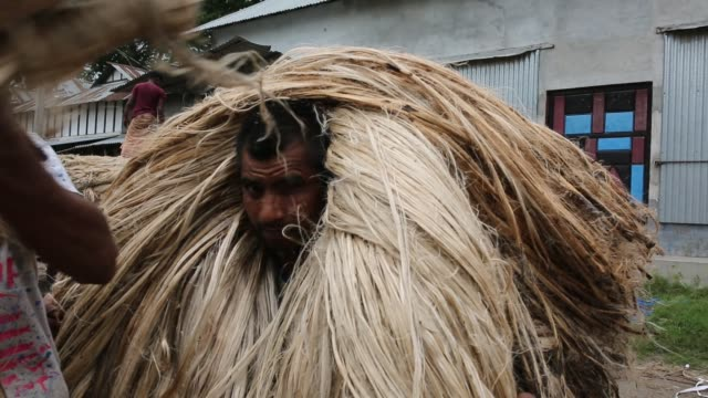 stockvideo's en b-roll-footage met laborer unloading jute fiber in soriotpur bangladesh erosion is endemic in bangladesh with millions affected as farmland crops and villages are... - human interest