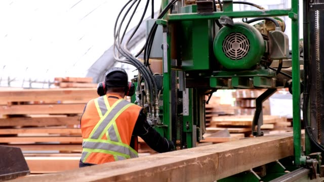 laborer uses industrial machinery to cut the wood - timber yard stock videos & royalty-free footage