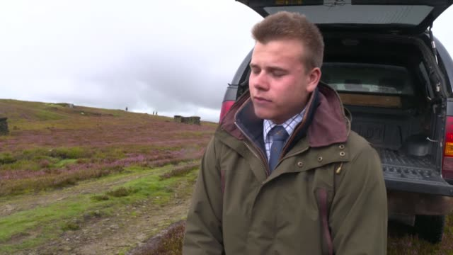labour demands review into grouse shooting as season begins england north yorkshire yorkshire dales ext various shots of daniel dent picking up dead... - national park stock videos & royalty-free footage
