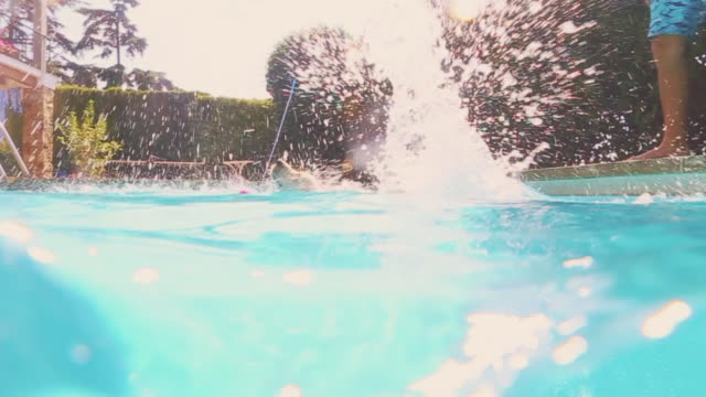 labrador dog swimming in the home swimming pool during summer with underwater view in a sunny day. - pantaloncino da bagno video stock e b–roll