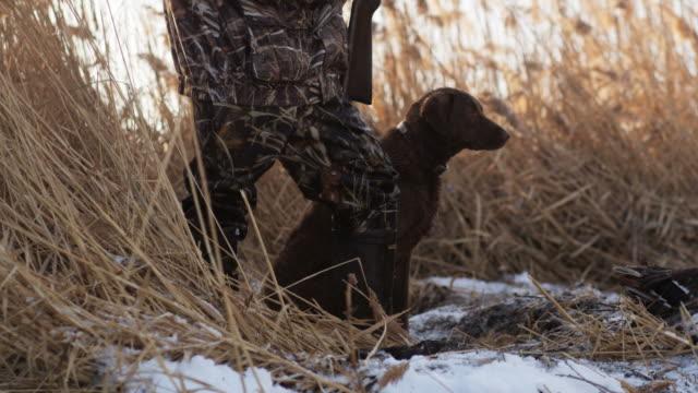 Labrador retriever stands next to his hunter master