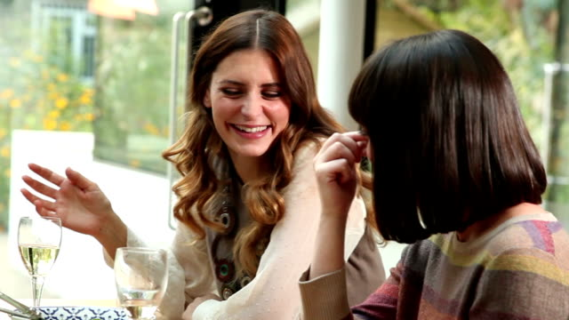 ladies at lunch. - two people stock videos & royalty-free footage