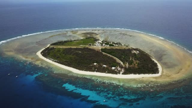 lady elliot island, australia - island stock videos & royalty-free footage