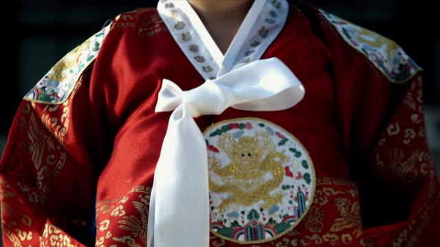 cu tu lady in queen dress standing behind gyeongbokgung palace / seoul, south korea  - 若い女性だけ点の映像素材/bロール