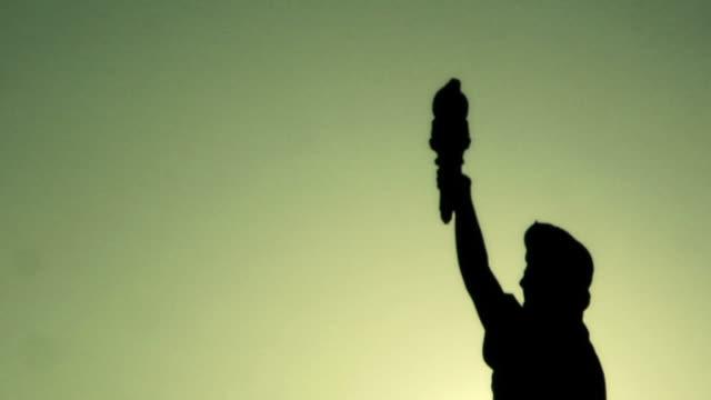 lady liberty bird - statue of liberty new york city stock videos & royalty-free footage