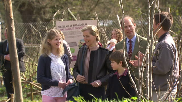 stockvideo's en b-roll-footage met lady louise windsor sophie countess of wessex and james viscount severn joined prince edward earl of wessex on a trip to he wild place project at... - britse koningshuis