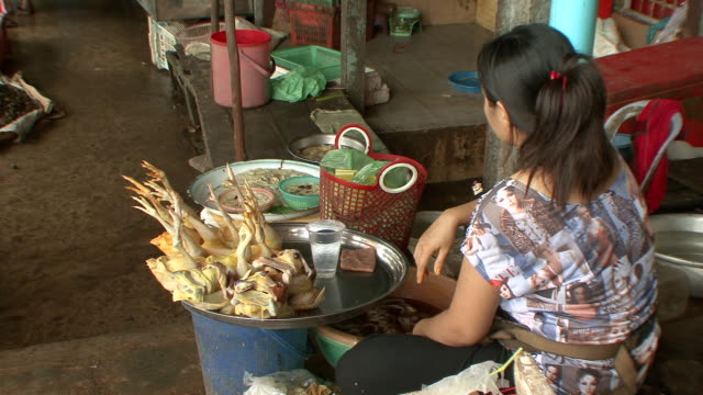 ms lady selling chickens legs at combodian market / sihanoukville, cambodia - cambodia stock videos & royalty-free footage