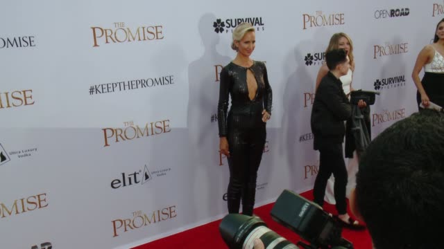 """lady victoria hervey at the """"the promise"""" los angeles premiere at tcl chinese theatre on april 12, 2017 in hollywood, california. - tcl chinese theatre video stock e b–roll"""