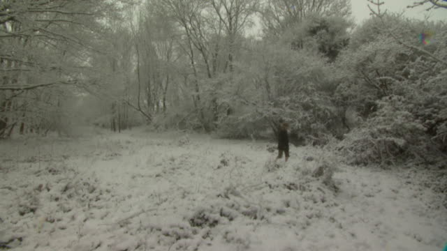 Lady walks through snow covered woods, towards camera, West Sussex, England