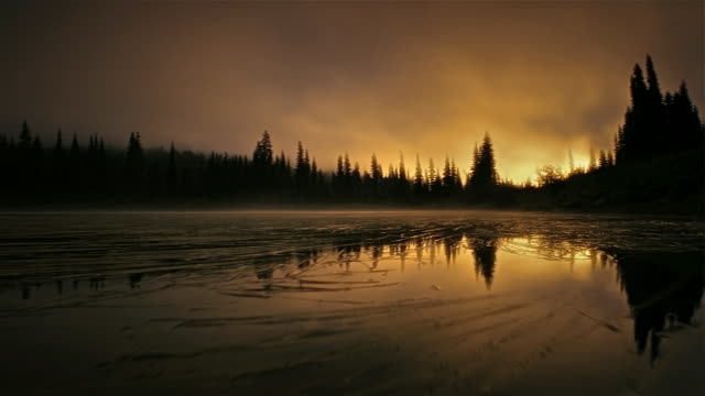 Laek and forest in morning mist, Mount Rainier National Park, Washington