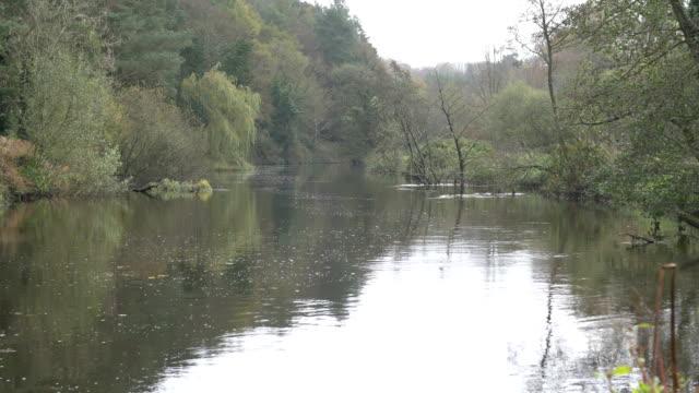 lagan river,northern ireland - river lagan stock videos & royalty-free footage