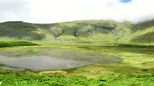 lagoa / caldeira branca on flores island, azores - reserva natural stock videos and b-roll footage