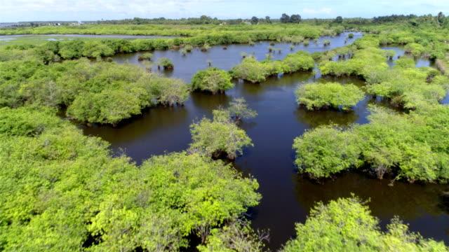 Lagoon Luftaufnahmen