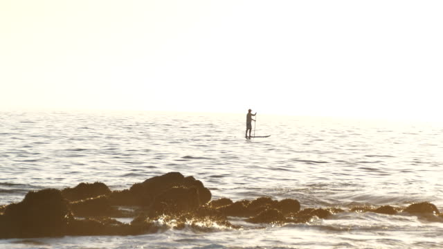 laguna beach a lone man on a paddleboard offshore backlit, laguna beach southern california, orange county, - laguna beach california stock videos & royalty-free footage