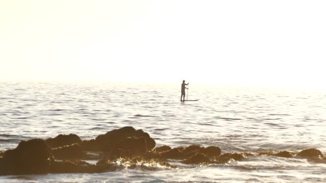 laguna beach a lone man on a paddleboard offshore backlit, laguna beach southern california, orange county, - laguna beach california stock-videos und b-roll-filmmaterial