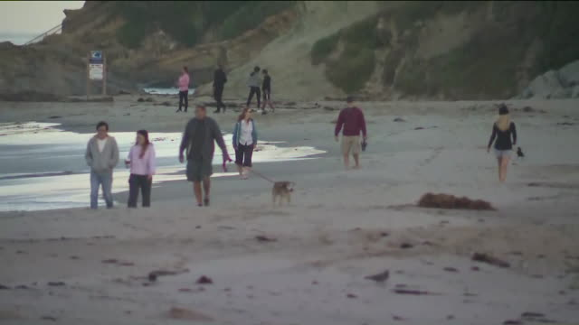 ktla laguna beach ca us people with dogs walking on the beach during covid19 pandemic on tuesday may 5 2020 - laguna beach california video stock e b–roll
