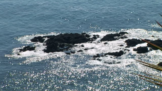 laguna beach, california - laguna beach california stock videos & royalty-free footage