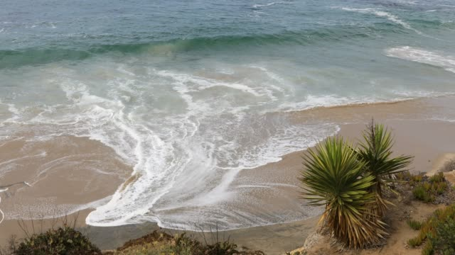 laguna beach - southern california - laguna beach california stock videos & royalty-free footage