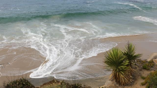 laguna beach - südkalifornien - laguna beach california stock-videos und b-roll-filmmaterial