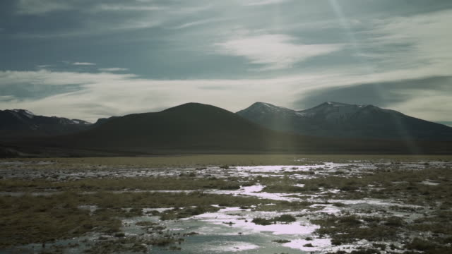 lagunas altiplanicas - atacama desert - bog stock videos & royalty-free footage