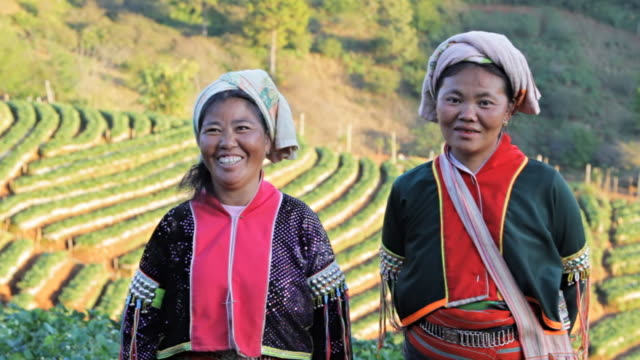 lahu hill tribe woman - traditional clothing stock videos & royalty-free footage