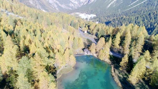lai di palpuogna - see im herbst schweizer alpen - nationalpark stock-videos und b-roll-filmmaterial