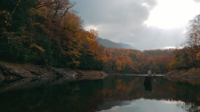 vídeos de stock, filmes e b-roll de pan ws lake and forest in autumn, shirakami-sanchi, tsugaru quasi-national park, aomori prefecture, japan - shirakami sanchi