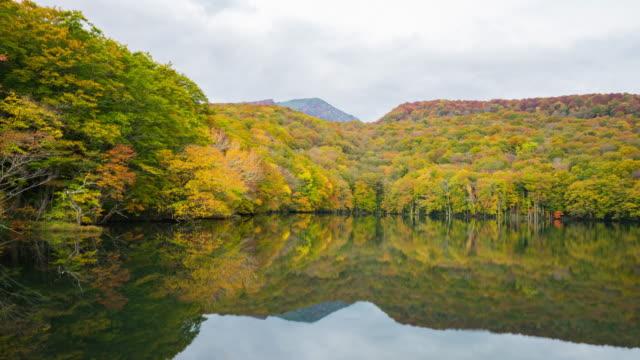湖と秋、秋田、日本の森。