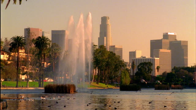 ws, lake and fountain in echo park, skyline of downtown los angeles in background, sunset, california, usa - fan palm tree stock videos & royalty-free footage
