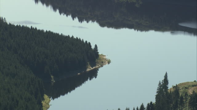 AERIAL Lake and woods in Harz National Park, Lower Saxony, Germany