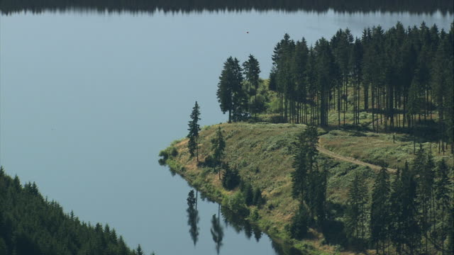 aerial lake and woods in harz national park, lower saxony, germany - spruce stock videos & royalty-free footage
