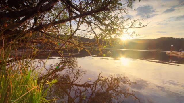 lake at dawn, oregon - 湖点の映像素材/bロール