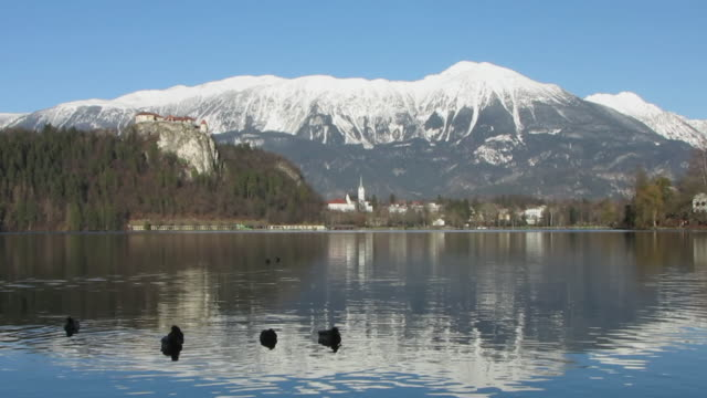 ws lake bled with castle and snowy mountains in background / bled, slovenia - lake bled stock videos & royalty-free footage