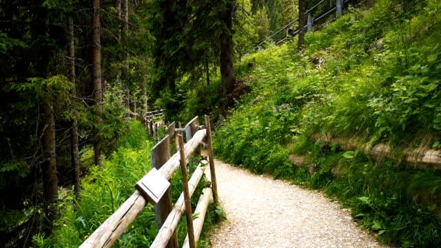 Lake Carezza in 4k - South Tyrol, Italy