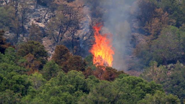 Lake Christine forest fire Basalt Mountain Colorado Rocky Mountain wildfire smoke