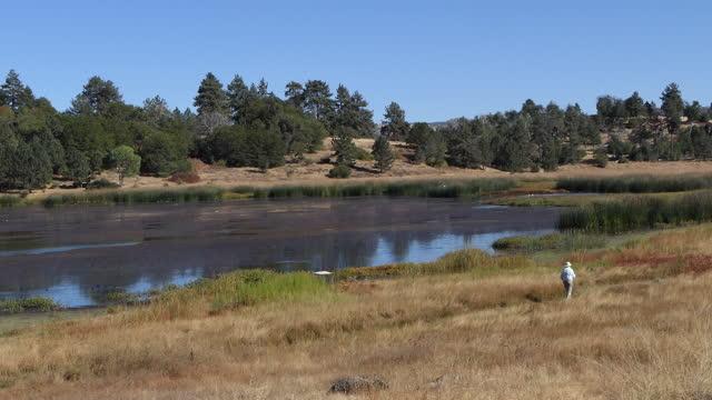 vídeos de stock e filmes b-roll de lake cuyamaca, south of the small town of julian california, rural lake shore older man walking with a hat. - organismo aquático