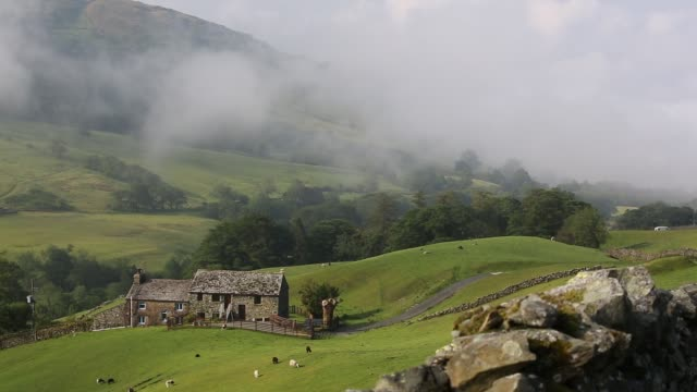 a lake district farmhouse and stock on the side of kirkstone pass, cumbria, uk. - sheep stock videos & royalty-free footage