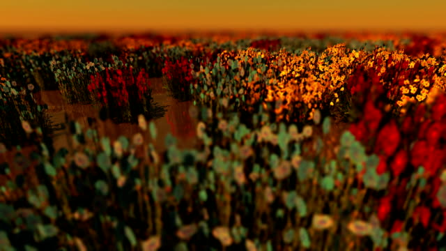 lake full of flowers - 3d animation stock videos & royalty-free footage