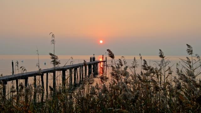 lake garda with reed and wooden jetty at sunset, lazise, verona, lake garda, lago di garda, veneto, italy - lago stock videos & royalty-free footage