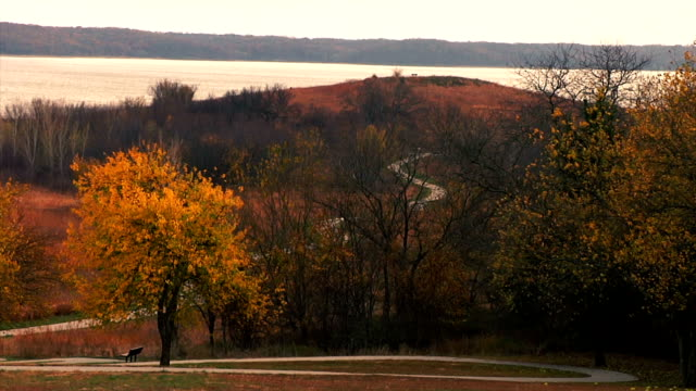 lake hill park - changing color stock videos & royalty-free footage