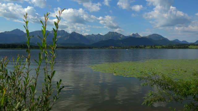 lake hopfensee, hopfen am see near fuessen, allgaeu, swabia, bavaria, germany - real time stock videos & royalty-free footage