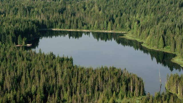 晴れた日にフォレスト内の空中湖