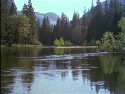 vídeos de stock, filmes e b-roll de lake in middle of forest / yosemite national park, california - 2001