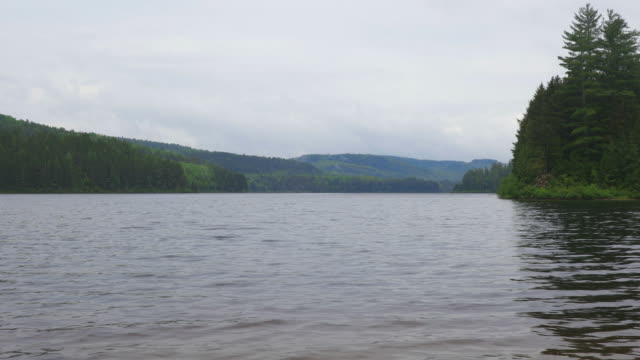 lake in parc national de la mauricie, quebec, canada on a cloudy day. - parc national stock videos & royalty-free footage