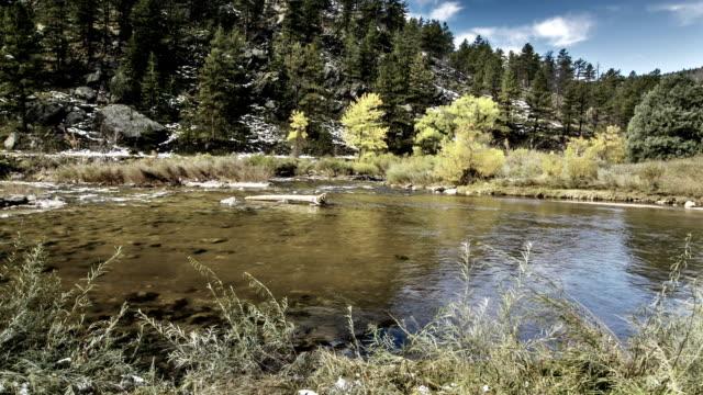sjö i skogen - uppdämt vatten bildbanksvideor och videomaterial från bakom kulisserna