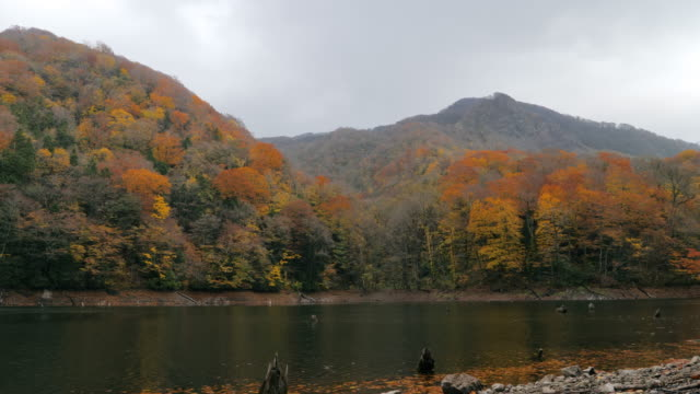 ws lake juniko and hills with forest in autumn, shirakami-sanchi, tsugaru quasi-national park, aomori prefecture, japan - aomori prefecture stock videos & royalty-free footage