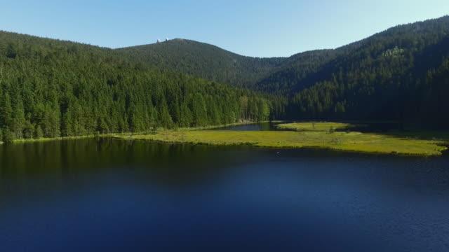 vídeos de stock, filmes e b-roll de arbersee lago kleiner e seu sobrevoo de ilhas flutuantes - floresta da bavária