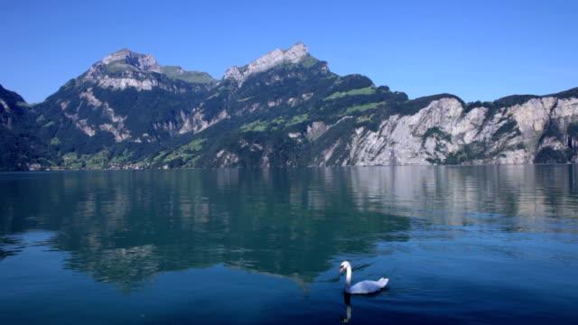 lake lucerne in sisikon - lake lucerne stock videos & royalty-free footage